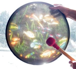 drums 18 ocean drum